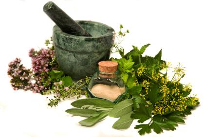 egzama-için-faydalı-bitkiler